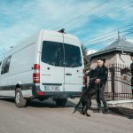 transport animale de companie Anglia Scotia Germania Belgia Olanda